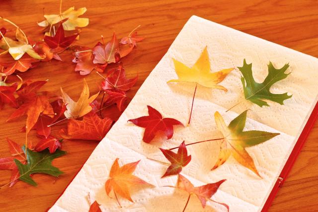 Projet 3/39 : une guirlande de feuilles d'automne