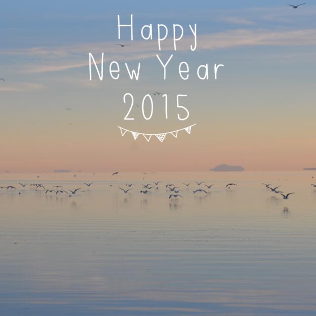 2014 : Rétrospective de nos voyages