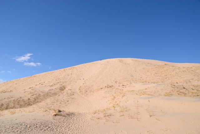 mojave-Desert-12