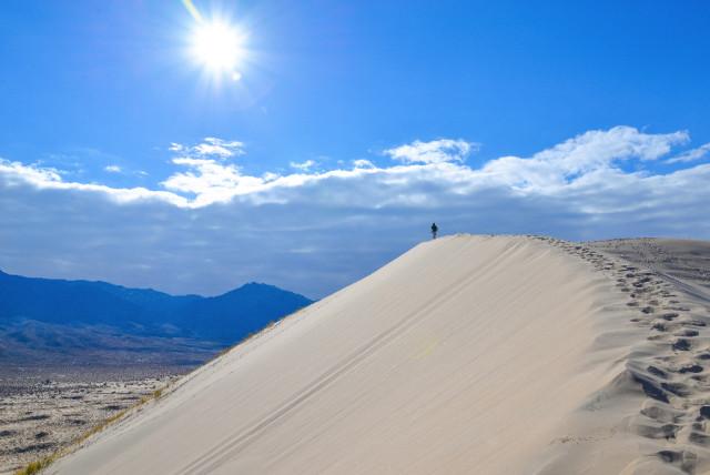 mojave-Desert-15