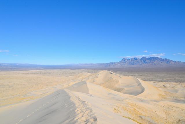 mojave-Desert-21