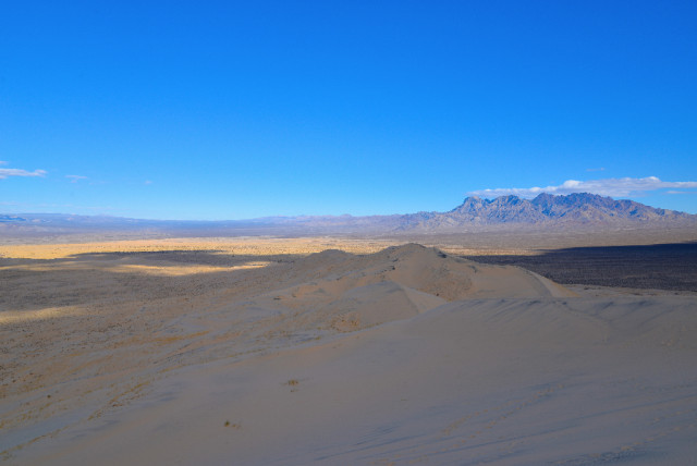 mojave-Desert-23