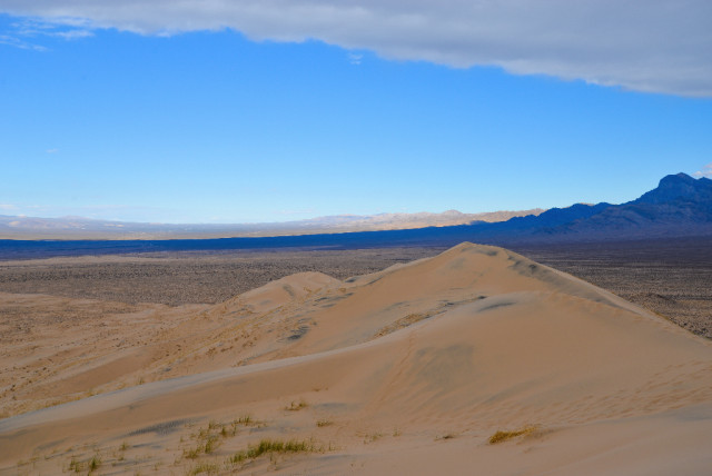 mojave-Desert-27