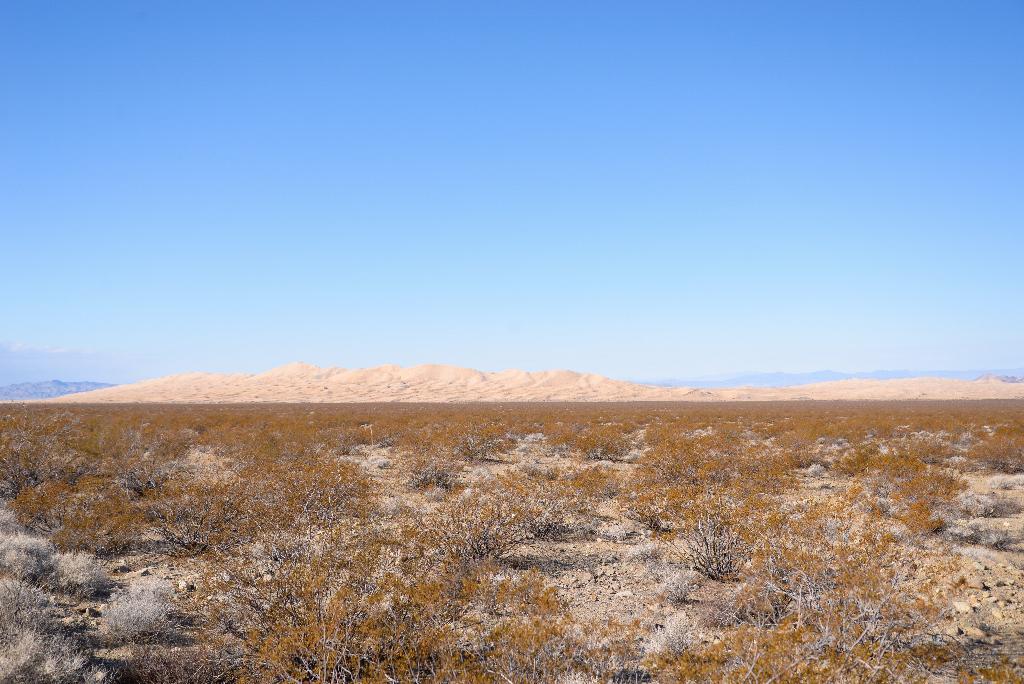 mojave-Desert-9