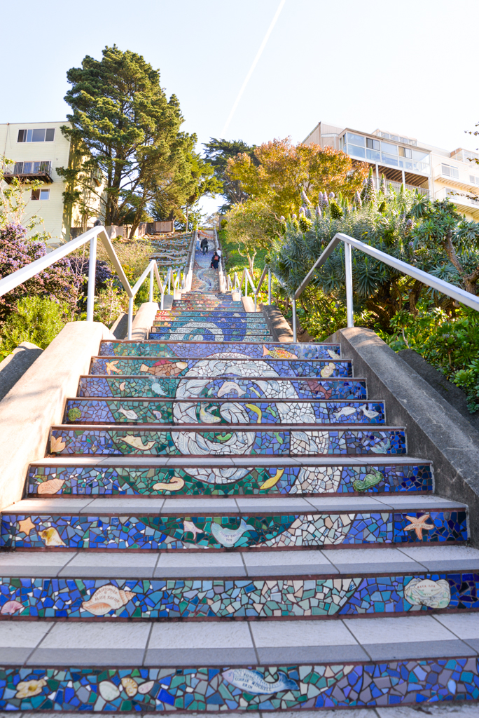 Moraga Stairs-1