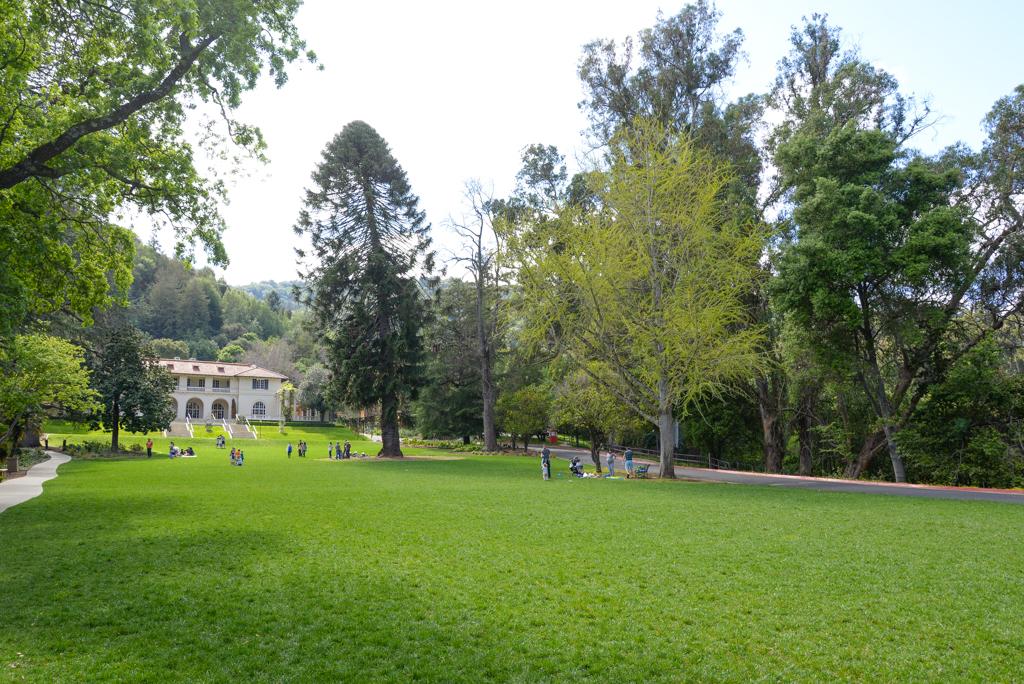Villa Montalvo-3