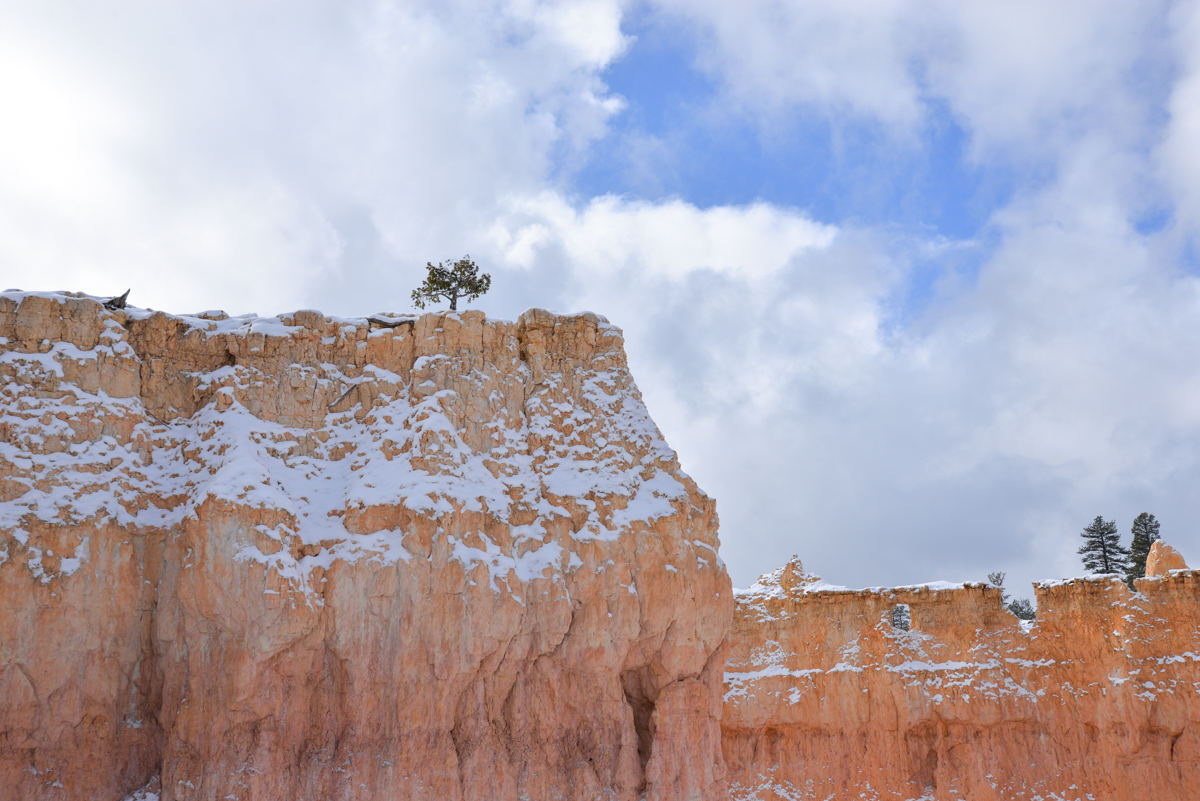 Bryce Canyon 018