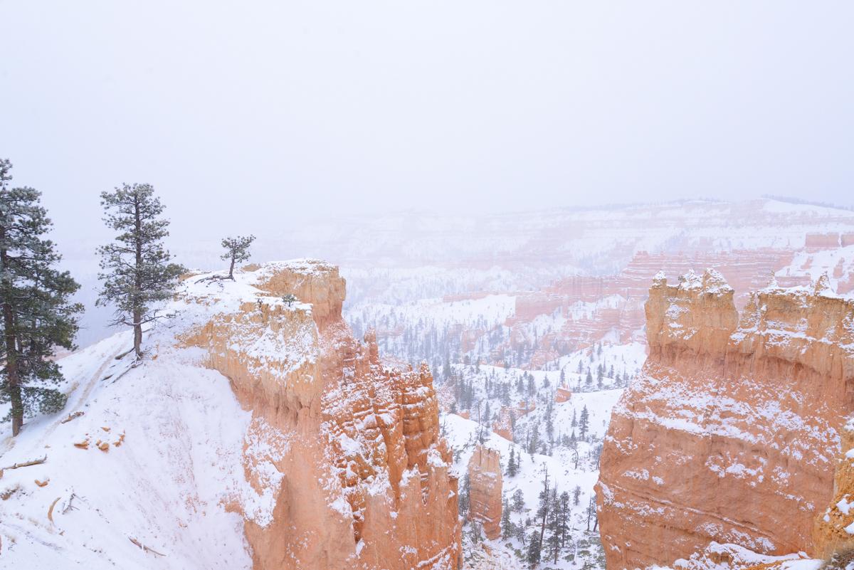 Bryce Canyon 021