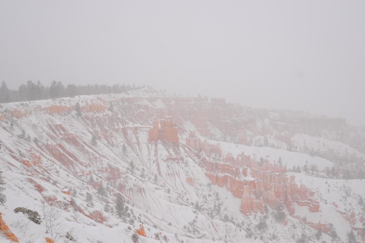 Bryce Canyon 023