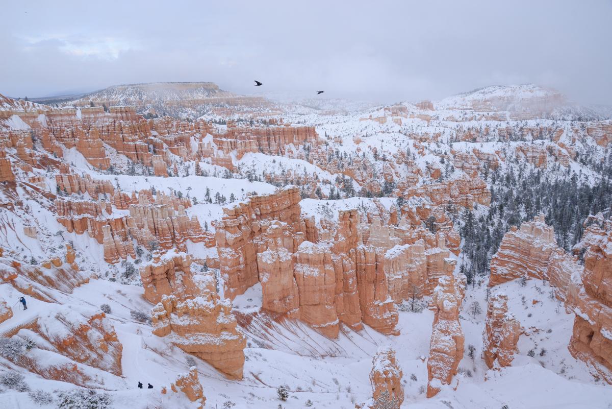 Bryce Canyon 030