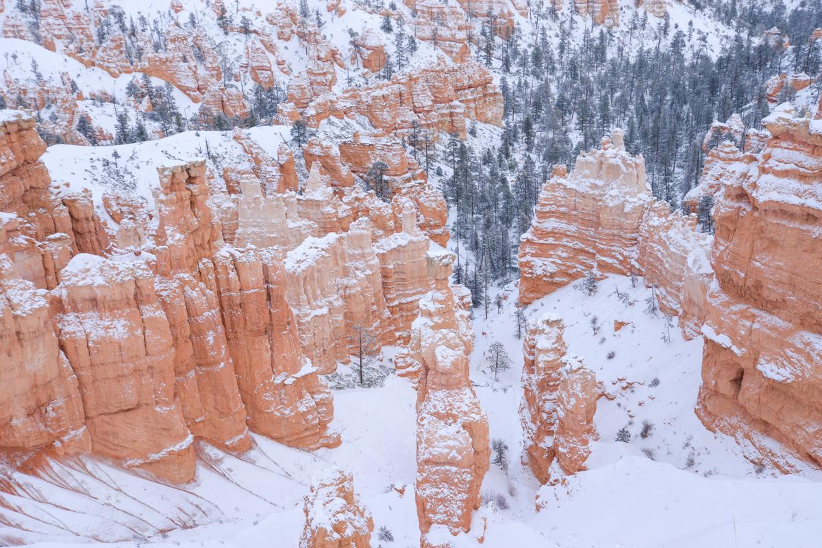 Bryce Canyon 032