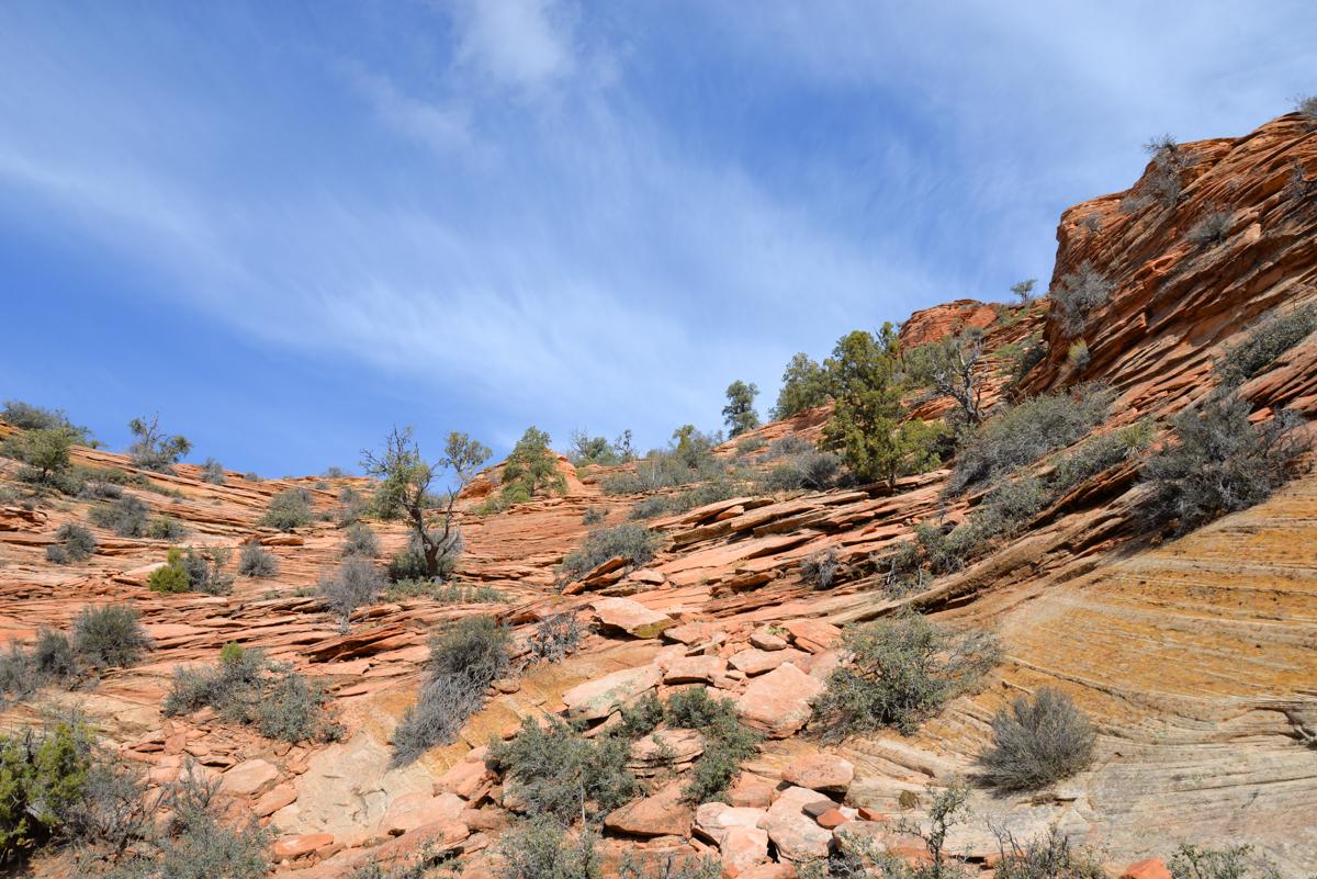 Zion-National-Park-escalade
