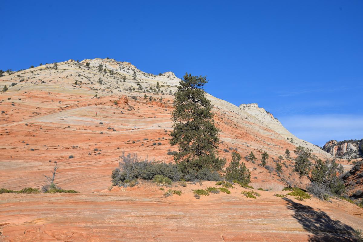 Zion-National-Park-hauteurs