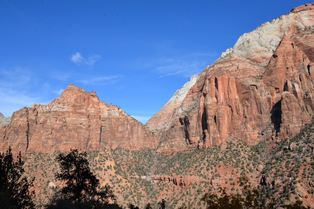 Zion-National-Park-panorama