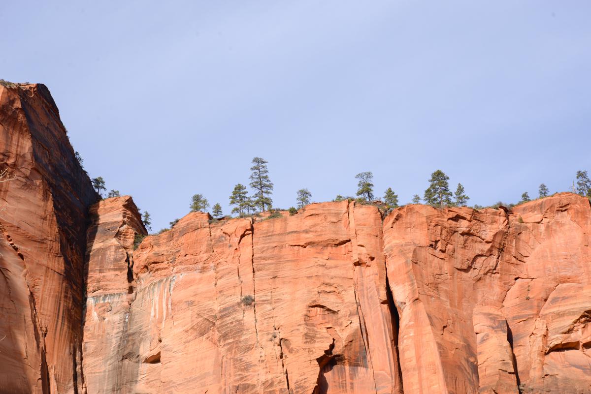 Zion-National-Park-roche-rouge