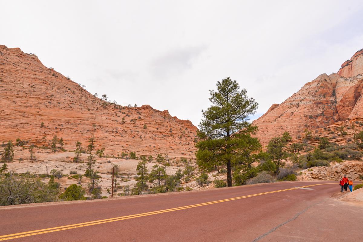 Zion-National-Park-route