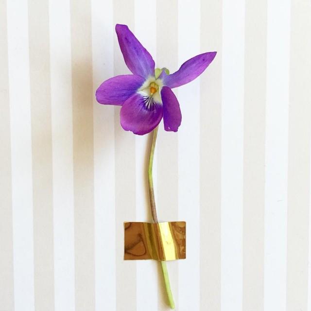 Flow-29-jours-violette