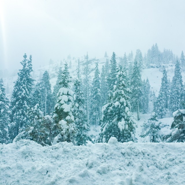 Jolis-bonheurs-fevrier-tahoe