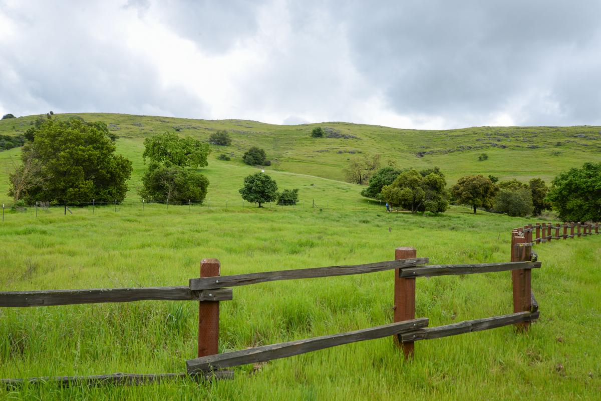 Santa-Teresa-County-Park-barriere
