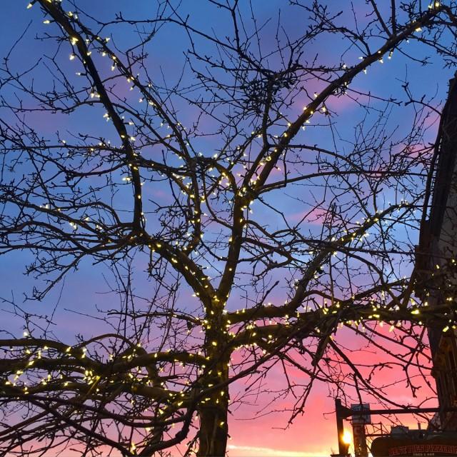 Tahoe-Donner-coucher-soleil