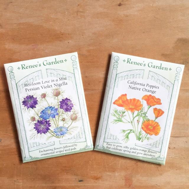 Jolis-bonheur-mars-graines-fleurs