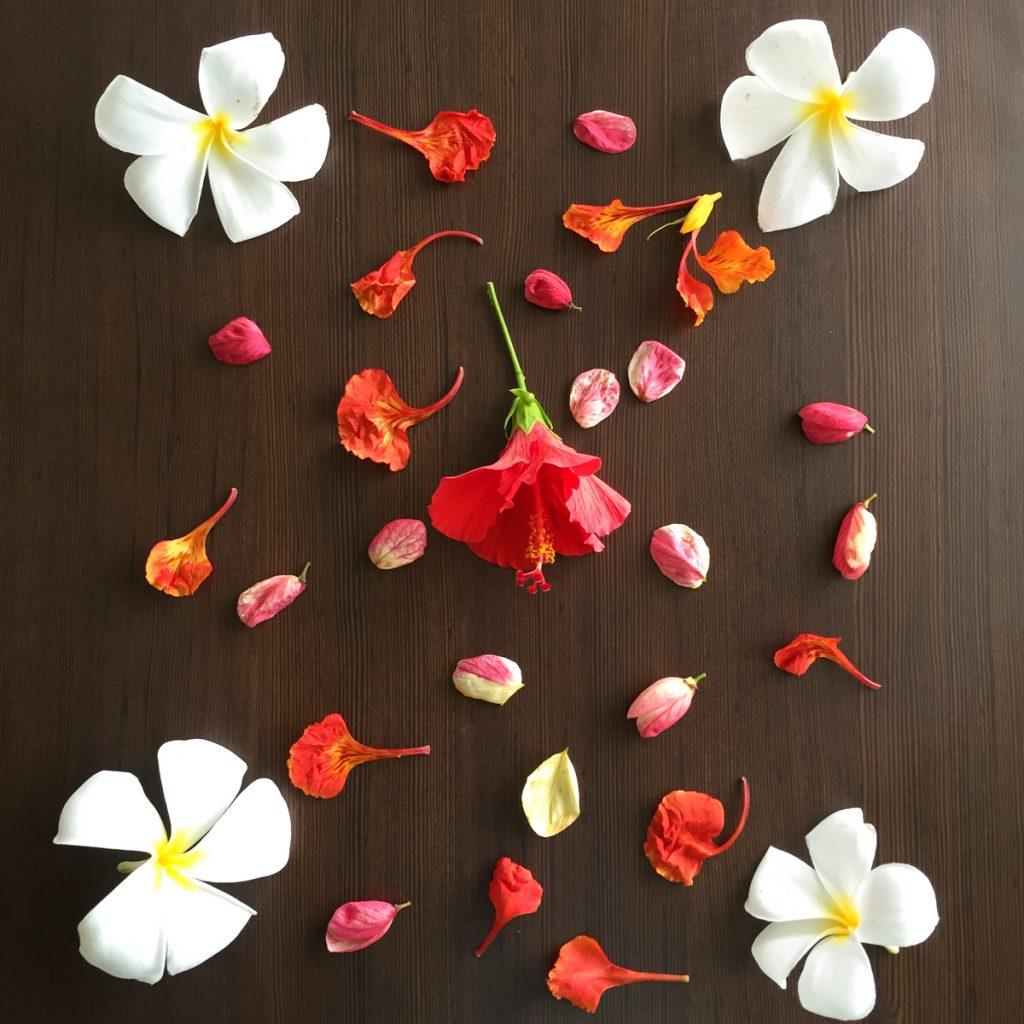 Bonheurs-juillet-fleurs