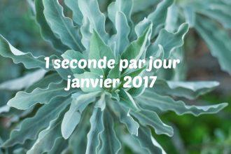 1 seconde par jour janvier 2017