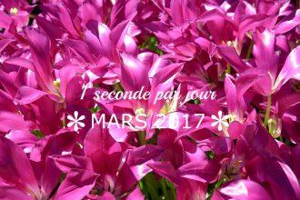 1-seconde-par-jour-mars-2017