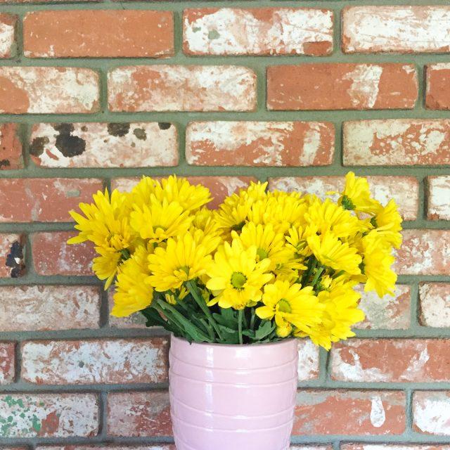 fleurs-decembre