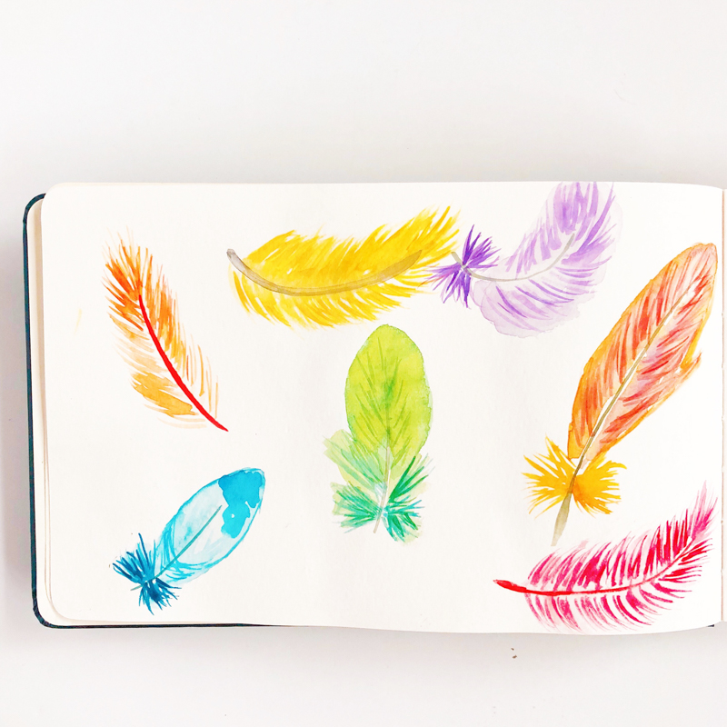 aquarelle-joli-bonheur-plumes