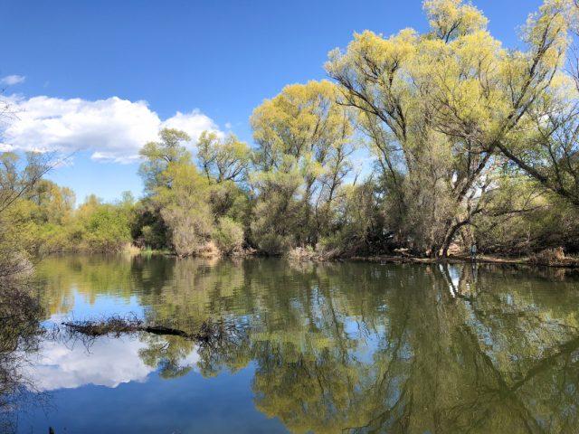 clear-lake-california