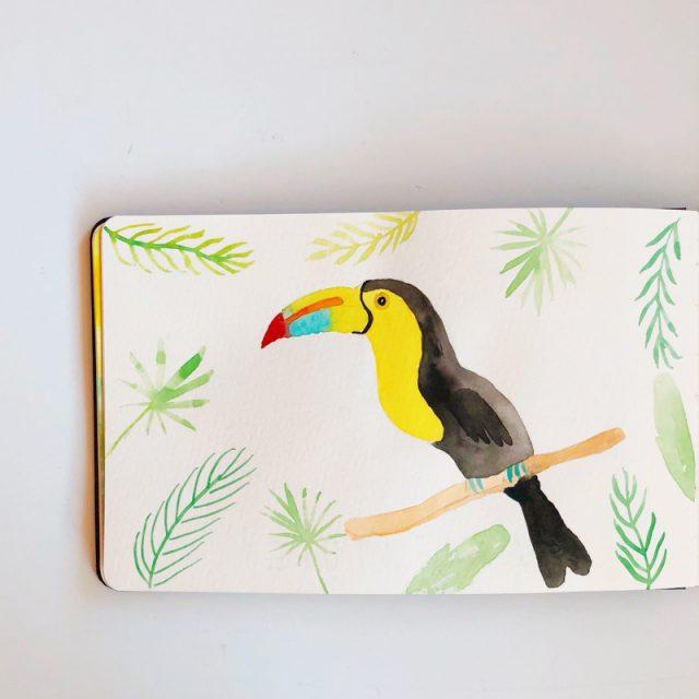 toucan-aquarelle
