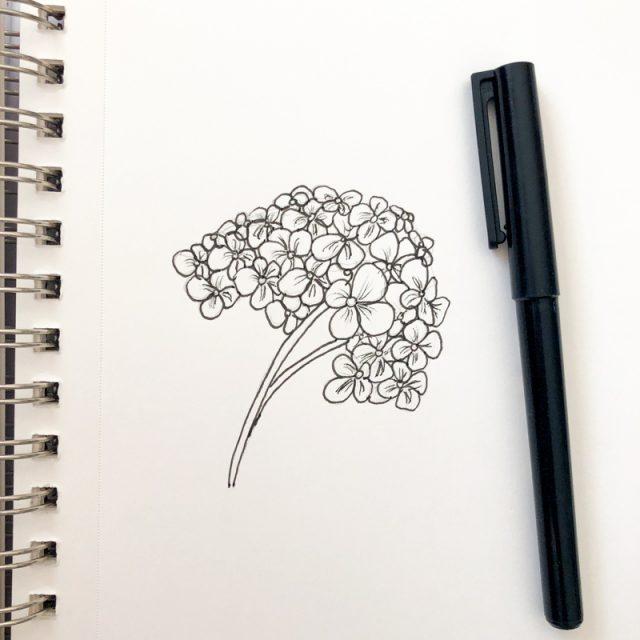 fleur-hortensia