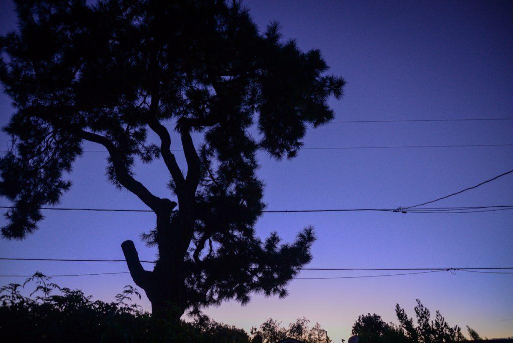 coucher-soleil-bleu