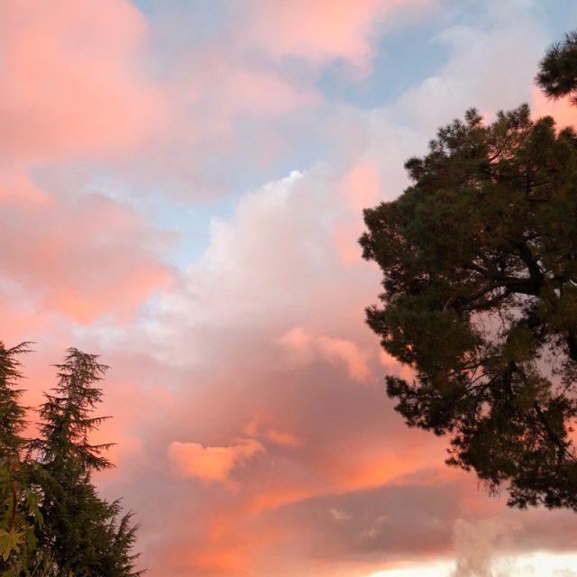 sunset-californie