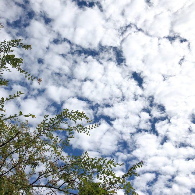 moutons-nuages-ciel
