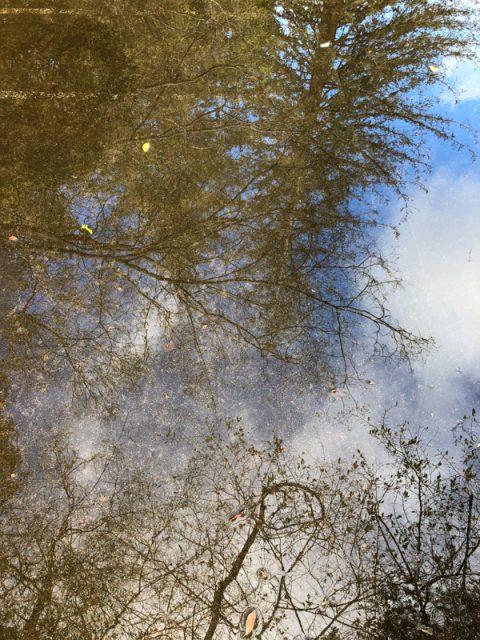reflets-flaques-eau