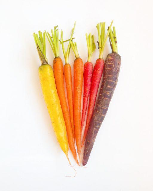 carottes-multicolors