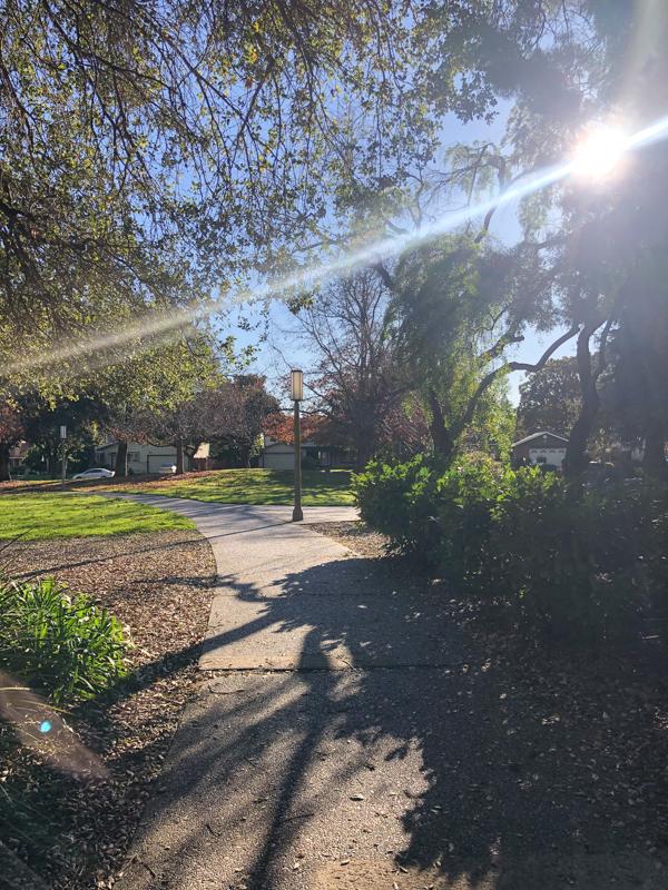soleil-parc-californie