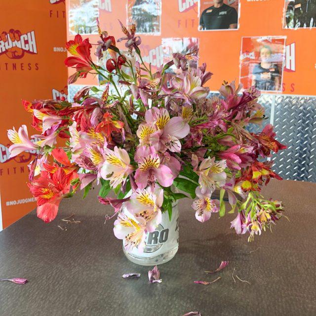 fleurs-salle-gym