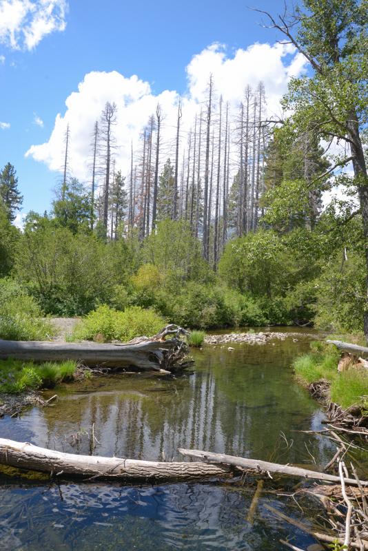 Lac-Tahoe-californie