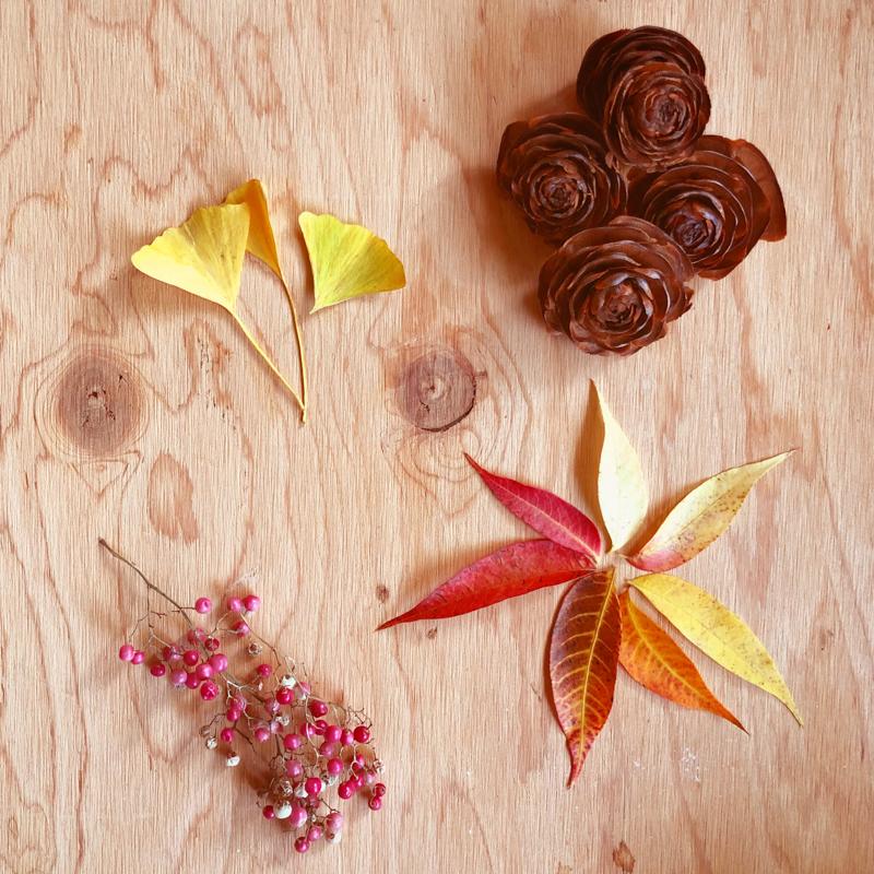 composition-automne