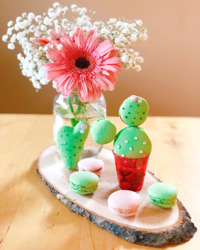 macarons-cactus