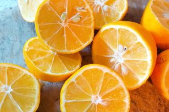 citron-citronnade