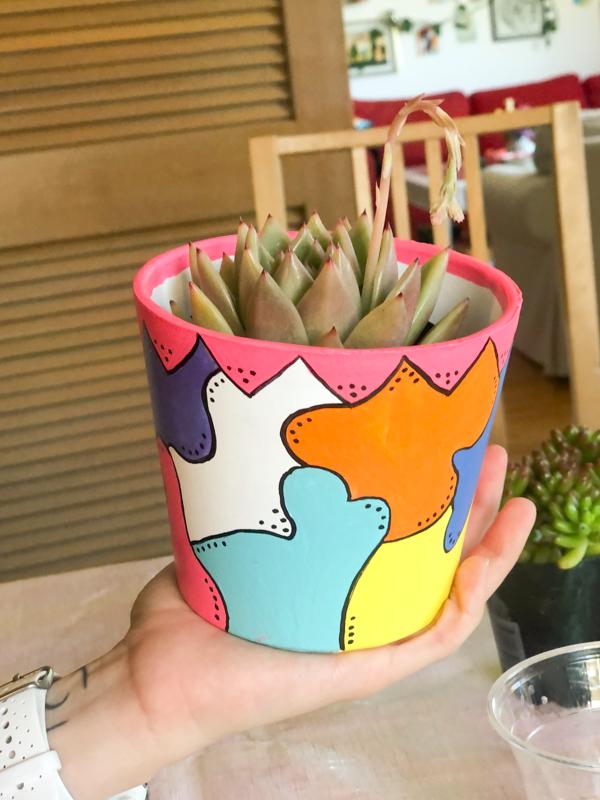 diy-pot-succulentes