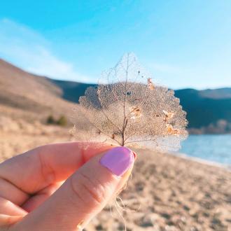 washoe-lake-nevada